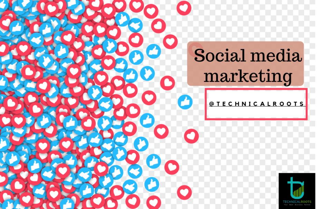 Social Media Marketing Agency In Delhi