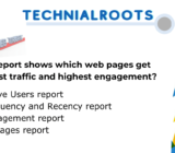 what report shows which web pages get the most traffic and highest engagement?