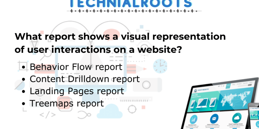 What report shows a visual representation of user interactions on a website?