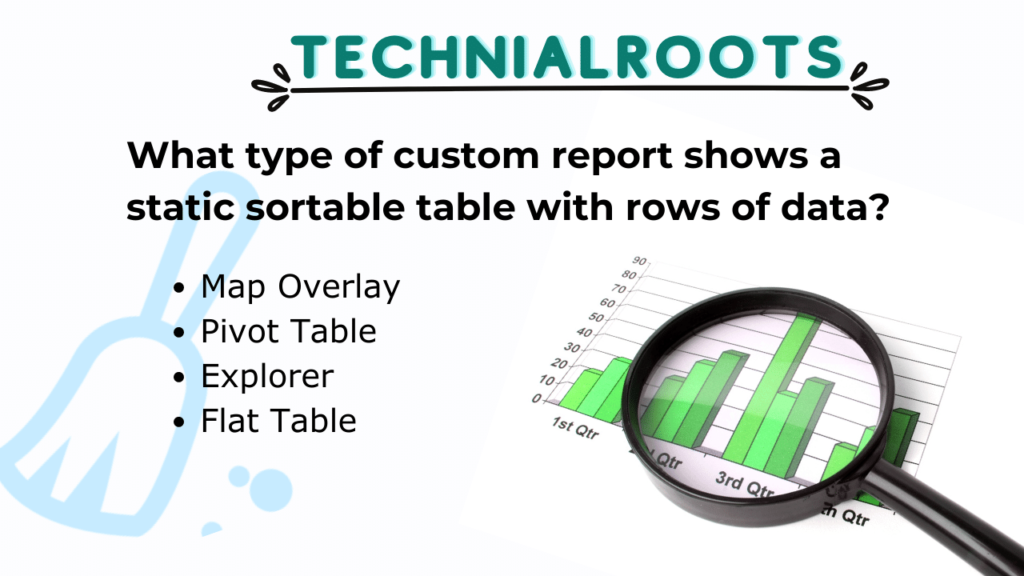What type of custom report shows a static sortable table with rows of data?
